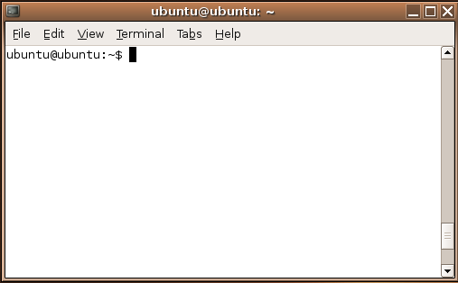 Terminal Window Screenshot